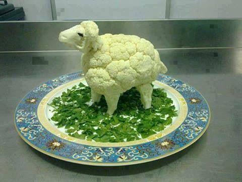 coliflor oveja